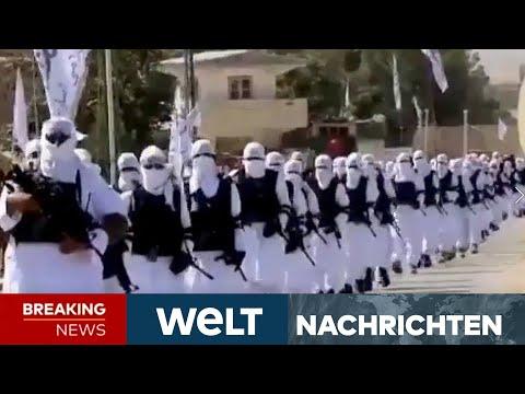 RETTUNG AUS AFGHANISTAN: Hinrichtungen durch Taliban - Chaos am Flughafen in Kabul | WELT Newsstream